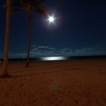 Caribbean moonlight